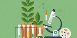 Biologija – termini dopunske nastave